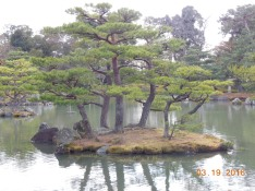 Mini island at Kinkakuji Temple, Kyoto